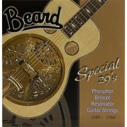 Jeu Beard Special 29