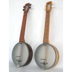 Firefly banjolele concert