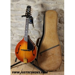 Kentucky KM505 mandolin