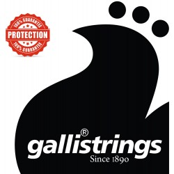 Plain loop end string 11 Galli