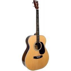 Guitare ténor Blueridge BR60T