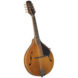 Kentucky KM-252 Mandolin
