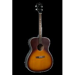 Guitare ténor ROST-7-TS