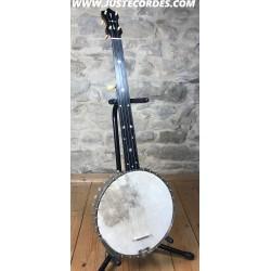 5 string fretless banjo...