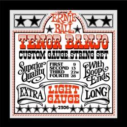 Ernie ball banjo tenor