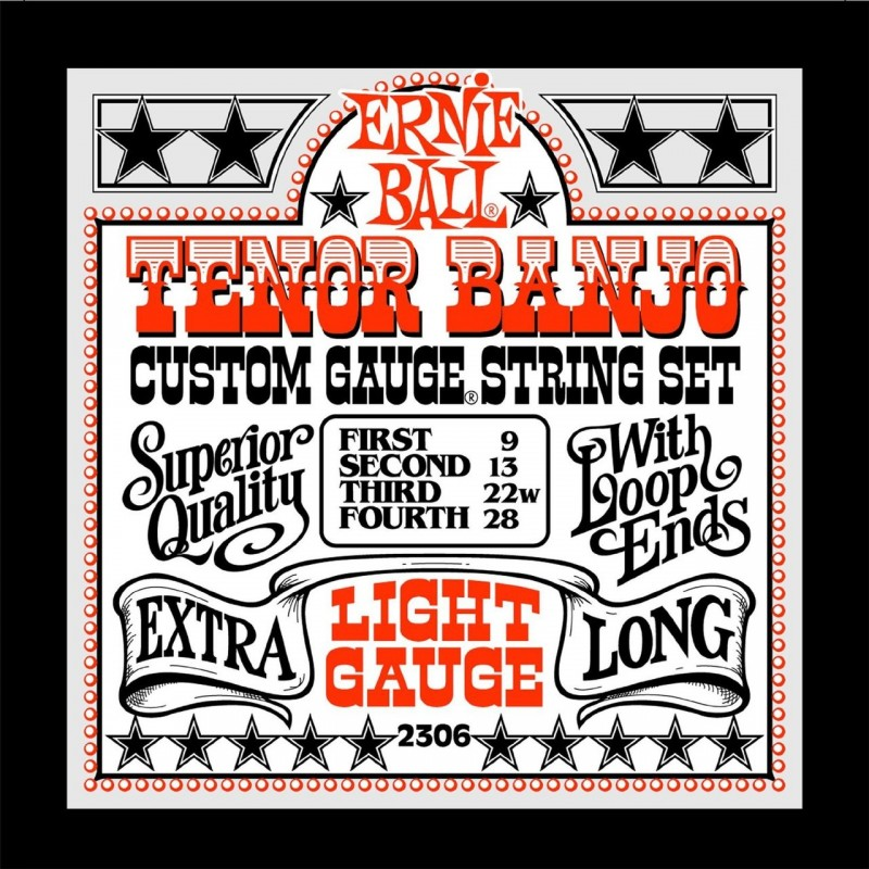 Ernie ball tenor banjo