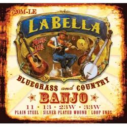 Tenor banjo La Bella