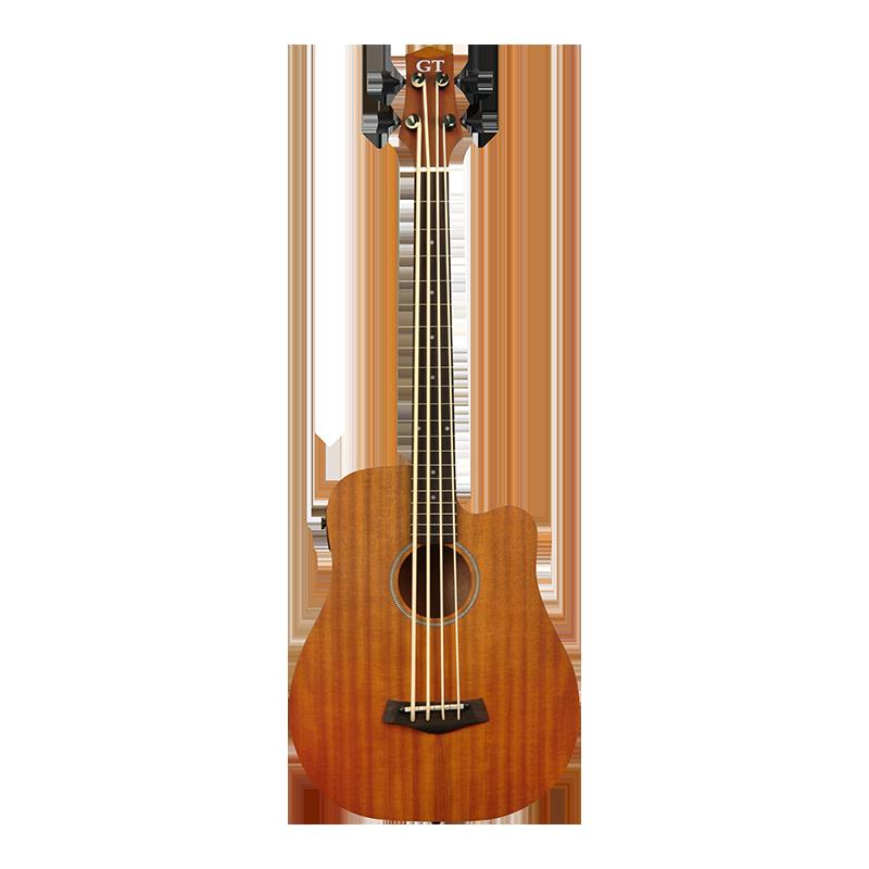 Micro Bass M-Bass 25 GT