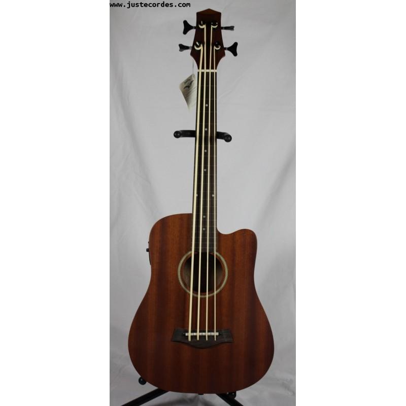Micro Bass 23 Fretless
