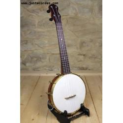 Sam Hutchings banjolele