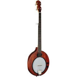 Banjo electrique EB5