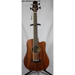 Micro Bass 23 Frettée